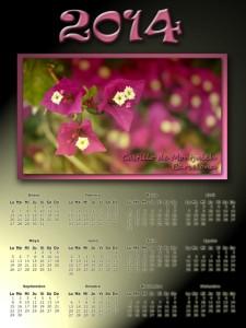 1003 Calendario 2014 02