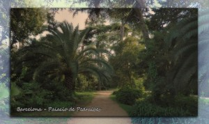 806 Barcelona Palacio Pedralbes paseo