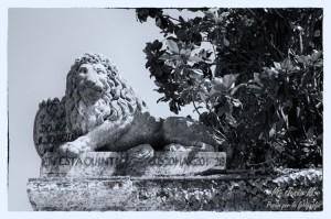 02 Parque laberinto león
