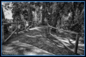 05 Parque laberinto camino