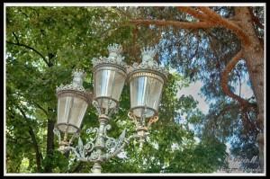11 Parque laberinto farola