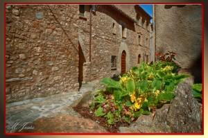 10 Mura flores y casas