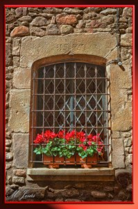 11 Mura ventana y flores