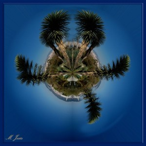 05 Pequeño planeta jardín botánico Barcelona