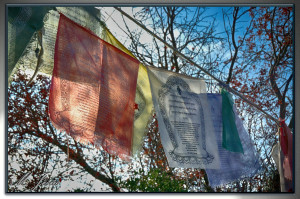 07 Monasterio budista pañuelos oracion