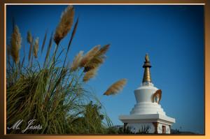 08 Monasterio Budista plantas y pagoda