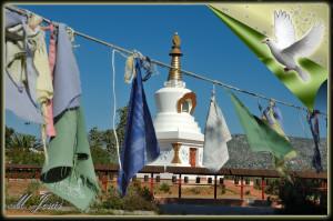 20 Monasterio budista pañuelos y pagoda