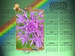 05 Calendario  2015 flor silvestre pirineo aragones