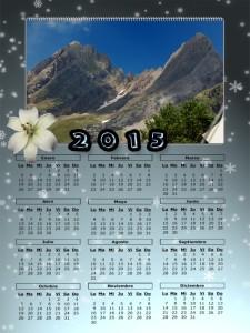 07 Calendario 2015 2015 Pineta