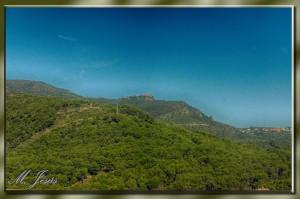 14 Castillo de Castelldefels-paisaje