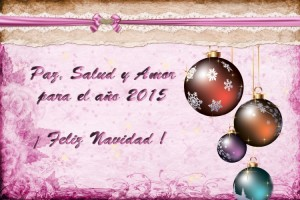 201 Postal Navidad 14-15