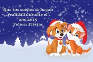 207 Postal Navidad 14-15