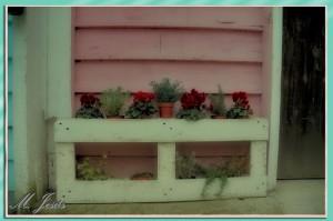 06 Mercantic - flores caseta